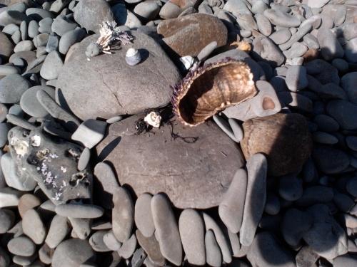 Beach bits sculpture